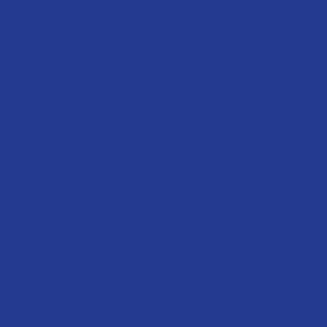 Wrestling DAD Design